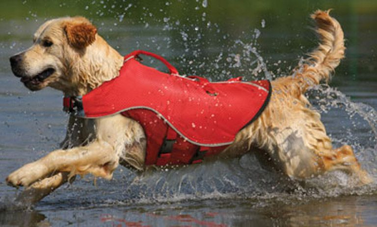 Discount Pet Life Jackets for Dogs